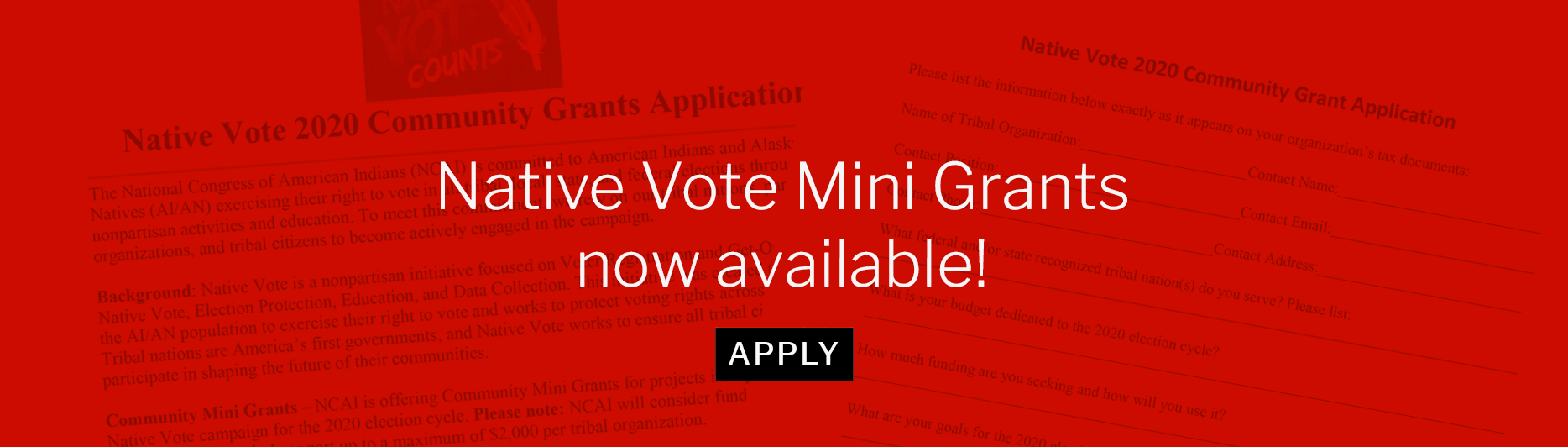 Native Vote Mini Grants now available