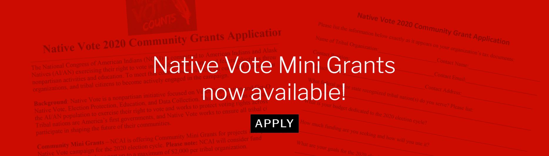 Native Vote Mini Grants now available